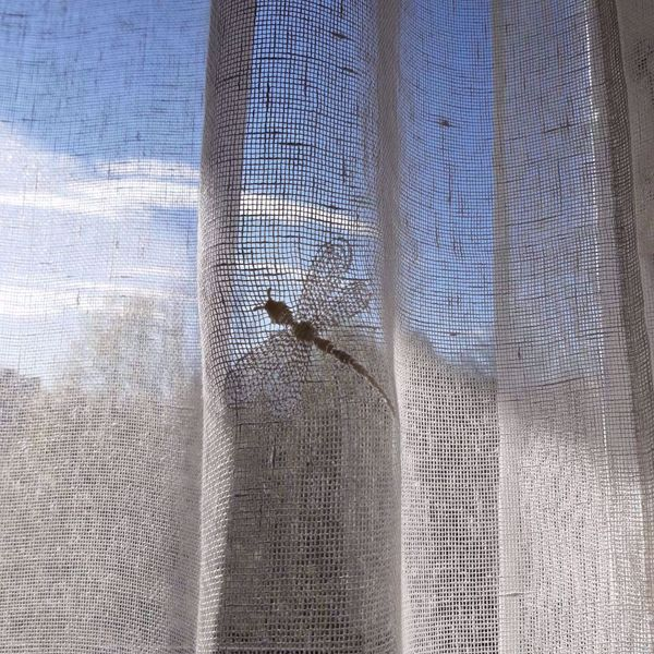 Picture of Dragonfly linen net curtains